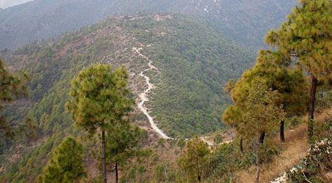 Champadevi Hiking