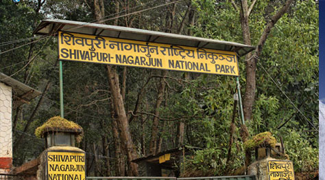 Nagarjun Hill Hiking